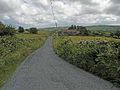 Country lane at Lanmore - geograph.org.uk - 1404781.jpg