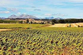 Countryside Landscape Palencia 2.jpg