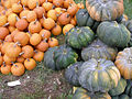 Covered bridge pumpkins.jpg