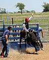 Cowboy Rodeo Bullriding (255793189).jpeg