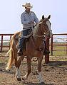 Cowboy riding flaxen mane sorrel.jpg