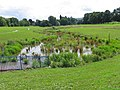 Cox's meadow flood storage basin. - geograph.org.uk - 1122919.jpg