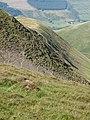Croft Head north ridge - geograph.org.uk - 237460.jpg