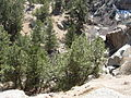 Curt Gowdy State Park (2426388184).jpg