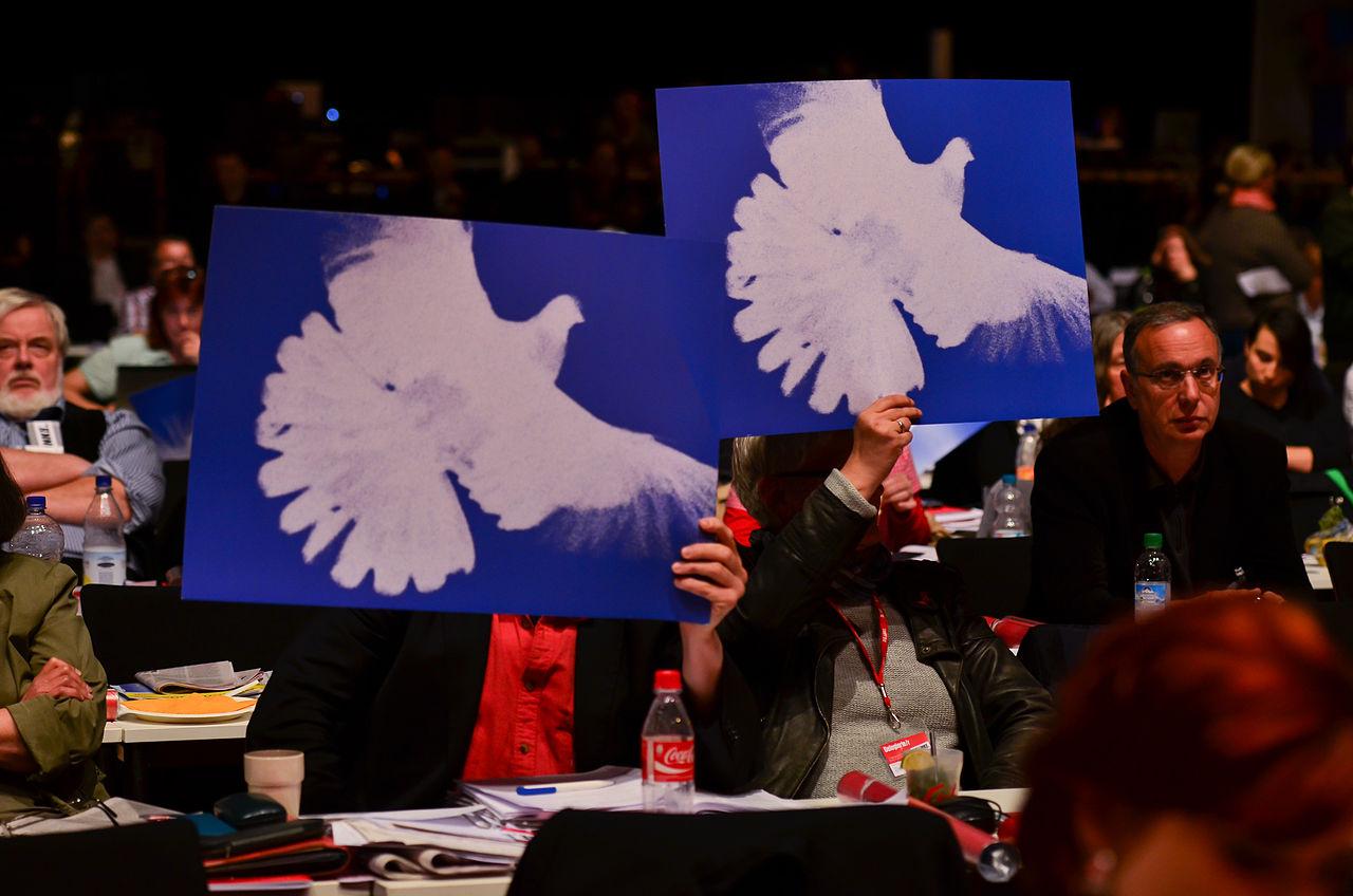 DIE LINKE Bundesparteitag 10-11 Mai 2014 -118.jpg