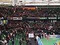 DVV-Pokal Suhl Fans.jpg