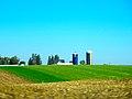 Dairy Farm near Sinsinawa - panoramio.jpg