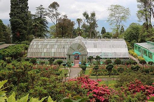 Darjeeling Botanical Garden 02