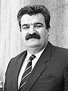 Desimir Jevtić.jpg