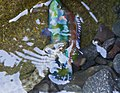 Dice Snake - Natrix Tessellata with a Ocellated Wrasse - Symphodus Ocellatus 02.jpg