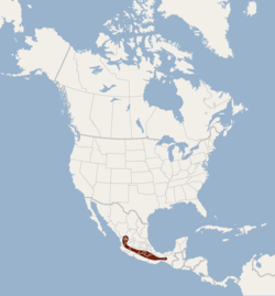 Distribution of Rhogeessa gracilis.png