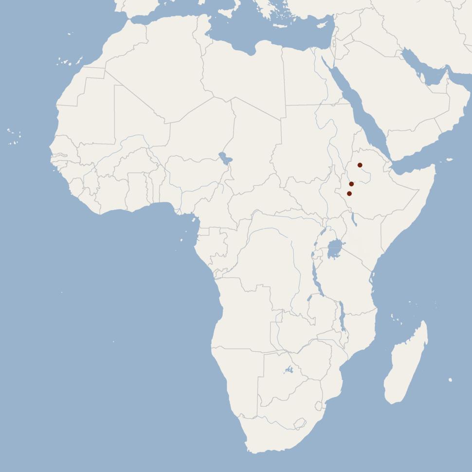 Distribution of Scotophilus ejetai