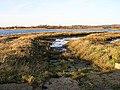 Disused slipway, Bosham - geograph.org.uk - 92277.jpg