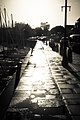 Dock (23330221).jpeg