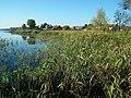 Drawno Dubie Lake (Drawno) (3).jpg