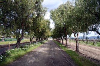 Livermore Valley AVA - Image: Driveway R Etzlaff