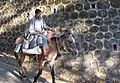 Dudh Wala Heads Home on his Mule (5284594554).jpg