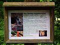 Dunlop Insektenhotel Wildpark Alte Fasanerie Klein-Auheim Juni 2012.JPG
