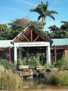 Durban Botanic Gardens Africas oldest surviving botanical gardens