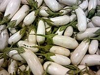 Eggplant White.jpg