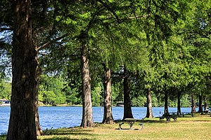 Emma Long Metropolitan Park - Image: Emma long park shoreline 2014