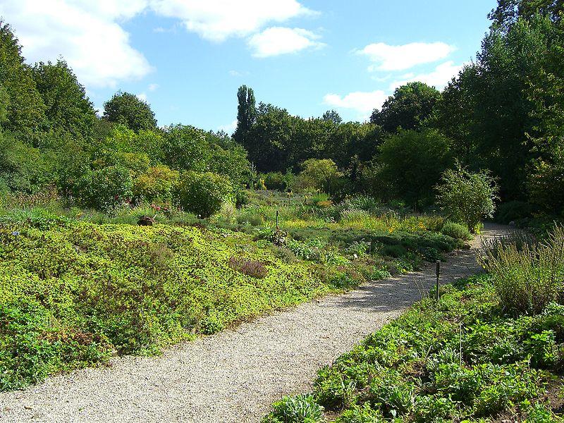 File:Erlangen-Aromagarten-overview.jpg