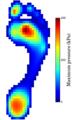 Example foot pressure.png