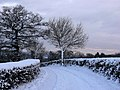 Farm track following heavy snow - geograph.org.uk - 1657212.jpg