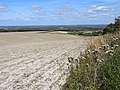 Farmland, Sparsholt - geograph.org.uk - 1575385.jpg
