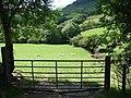 Farmland at Nant-Carfan - geograph.org.uk - 520671.jpg