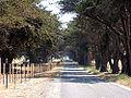 Federation Trail.jpg