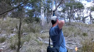 Field archery Competitive archery under field hunting conditions