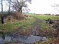 Field beside Scripton Gill - geograph.org.uk - 346260.jpg