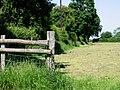 Field edge near Blandred Farm - geograph.org.uk - 843901.jpg