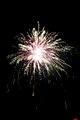 Fireworks DSC 0618 (6848283956).jpg