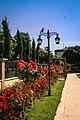Five City Blocks Smell Of Roses - panoramio (4).jpg