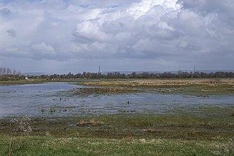 Catcott - Image: Flooded Catcott Heath geograph.org.uk 149126