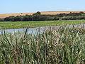 Florínia 2013-07-26 - Visita à região (6) (9400962073).jpg