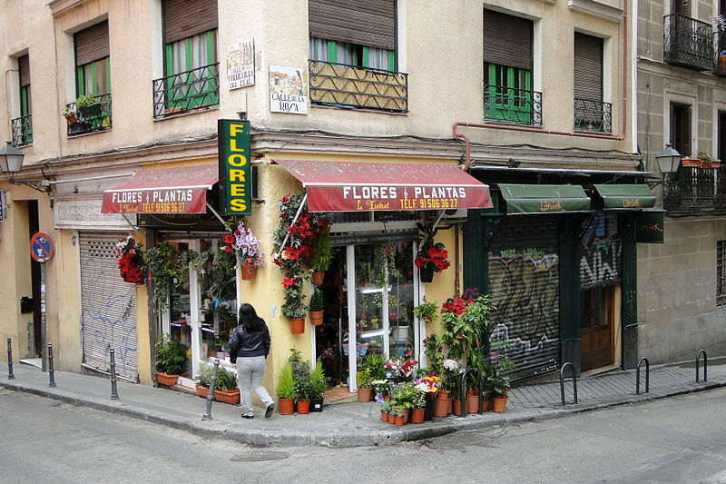 Small flower shop in Madrid, Spain