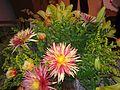 Flower bouquets.jpg