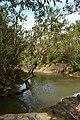 Fluss auf einem Ausflug in Garopaba 8 (21928024860).jpg