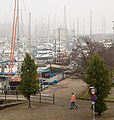 Fog on the Marina IMG 7993 - panoramio.jpg