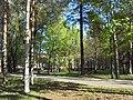 Fokinskiy rayon, Bryansk, Bryanskaya oblast', Russia - panoramio (110).jpg