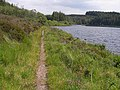 Footpath alongside Lough Meenameen - geograph.org.uk - 1390974.jpg