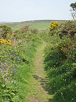 File:Footpath at the base of Chapel Carn Brea - geograph.org.uk - 801128.jpg