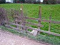 Footpath to Manor House Farm - geograph.org.uk - 381127.jpg