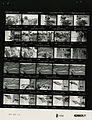 Ford B1632 NLGRF photo contact sheet (1976-09-25)(Gerald Ford Library).jpg