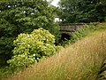 Former bridge on the Queensbury to Keighley Railway - geograph.org.uk - 1592070.jpg