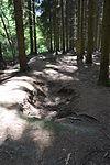 Foxholes - Bois Jacques - Bastogne - 03.jpg
