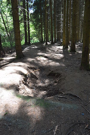 E Company, 506th Infantry Regiment (United States) - One of the still existing foxholes in the Jacques woods, occupied by the E Company in December 44 and January 45